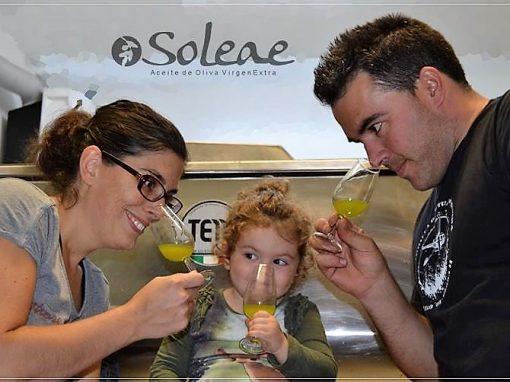 PROYECTO SOLEAE – PRODUCCIÓN DE ACEITE DE OLIVA VIRGEN EXTRA