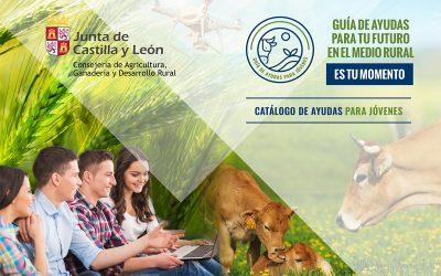 Guía de ayudas para jóvenes del medio rural