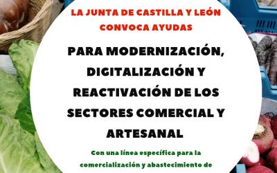 CONVOCATORIA DE AYUDAS PARA LOS SECTORES COMERCIAL Y ARTESANAL DE  CASTILLA Y LEÓN.